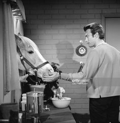 "February 1, 1962 MISTER ED Clint Eastwood in ""Clint Eastwood Meets Mr. Ed"". T23641_145 Copyright CBS Broadcasting, Inc., All Rights Reserved, Credit: CBS Photo Archive"